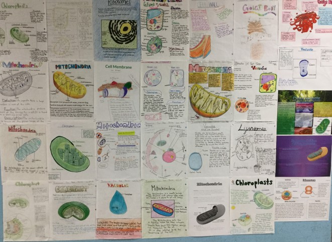 cell-part-posters