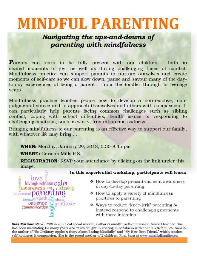 Mindful Parenting Workshop January 29 2018